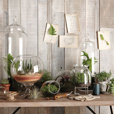 5d84c MODERN TERRARIUMS INDOOR PLANTS HOME DECOR IDEAS BELLE MAISON BLOG 2